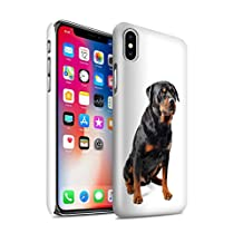STUFF4 Gloss Hard Back Snap-On Phone Case for Apple iPhone X/10 / Swiss Mountain Design / Dog Breeds Collection