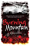 Front cover for the book Burning Mountain by L. J. Adlington