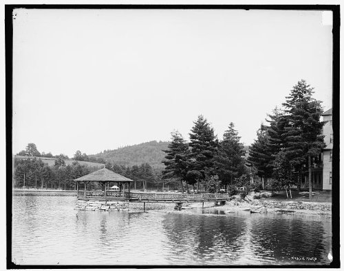 Photo: Pine Grove Springs Hotel, resorts, Chesterfield, Lake Spofford, New Hampshire, 1900 . Size: 8