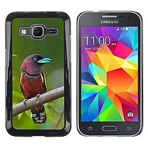 Caucho caso de Shell duro de la cubierta de accesorios de protección BY RAYDREAMMM - Samsung Galaxy Core Prime SM-G360 - Bird Green Ornithology