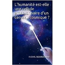 L'humanité est-elle une cellule embryonnaire d'un cerveau cosmique ?: Essai (French Edition)