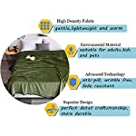 DREAMFLYLIFE-Luxury-Fleece-Blanket-380GSM-Summer-Thick-Blanket-Super-Soft-Blanket-Bed-Warm-Blanket-Couch-Blanket-for-All-Season-Green-Queen-Size90x90-in