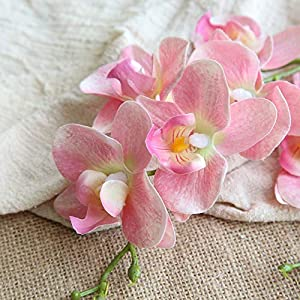 Artificial Flowers,Longay Beautiful Butterfly Orchid Silk Flower Home Wedding Party Phalaenopsis Bouquet (C) 94