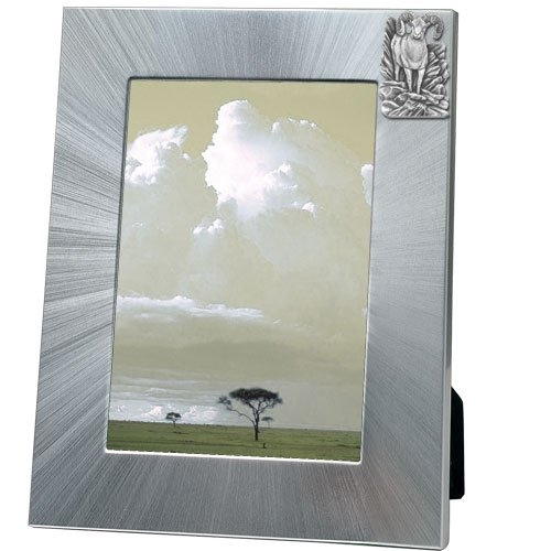 Bighorn Sheep Picture Frame 5