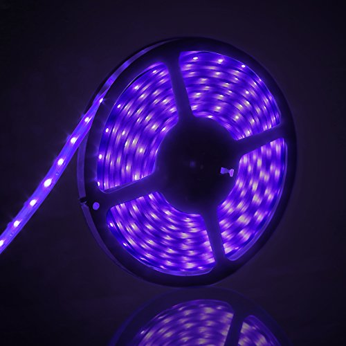 12 Volt Black Light Led
