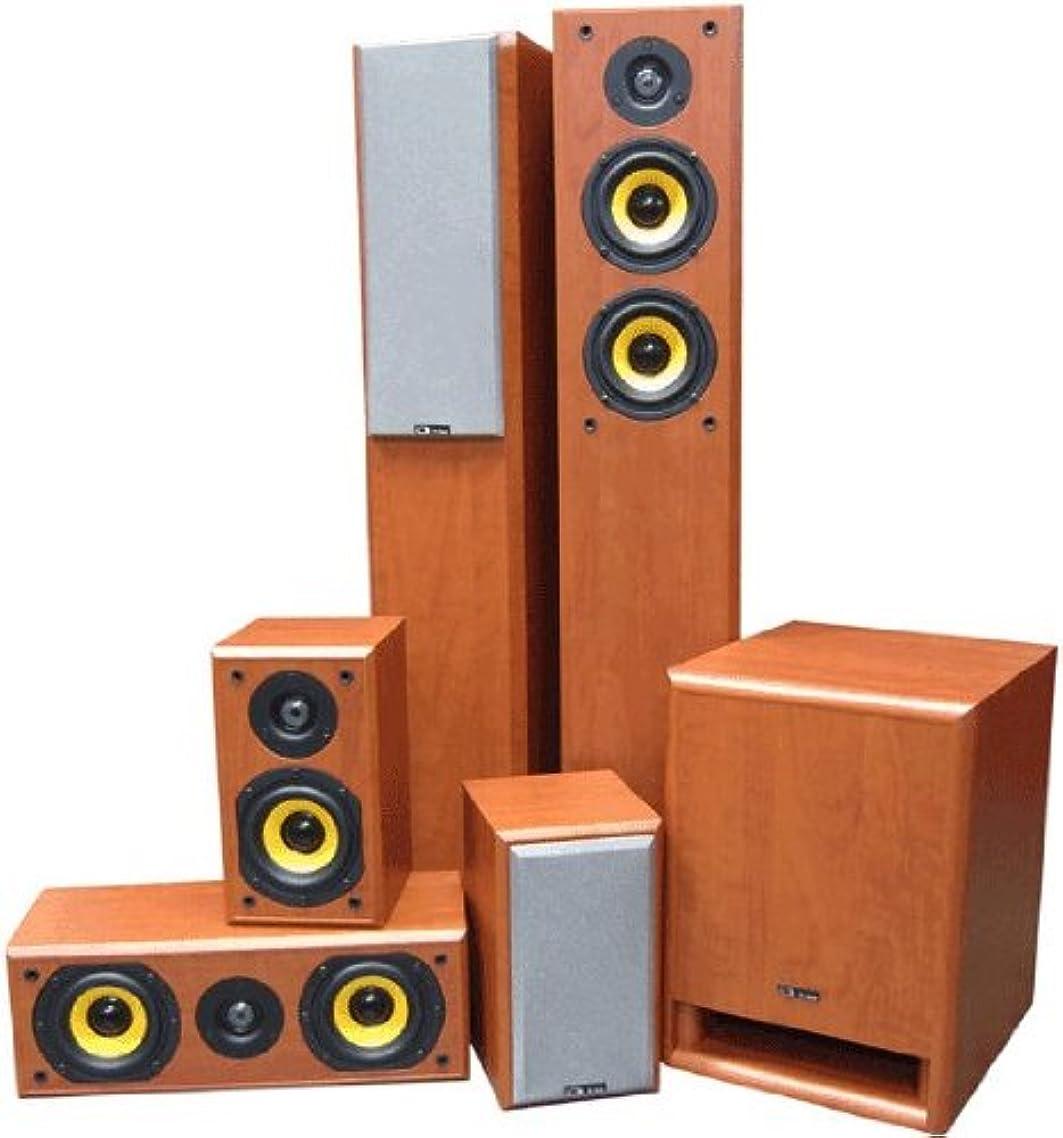 修道院操縦する専門化する【並行輸入品】Focal フォーカル Sib&Co Series 5.1 Jet Black Home Theater ホームシアター Speaker スピーカー