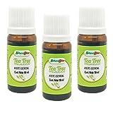 3 Pack - Arbol de Té - Tea Tree (Melaleuca) Aceite Esencial 100% – 3 Frascos de 10 ml. cada uno con Gotero (Aromaterapia)