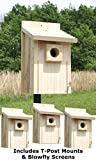 """Stokes Bluebird House Package with """"T"""" Post Adapters Review"""
