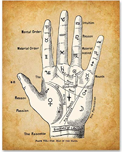 Palm Reading Divination Chart - 11x14 Unframed Art Print - Makes a Great Gift Under $15 for Fans of the Occult, Supernatural and Astrology. (Fortune Teller Decorations)
