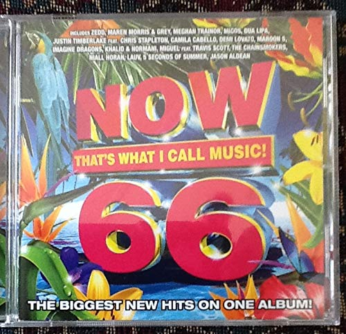 Now That's What I Call Music! 66 [Music CD]