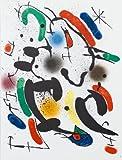 Joan Miro-Litografia Original VI-1972 Mourlot Lithograph