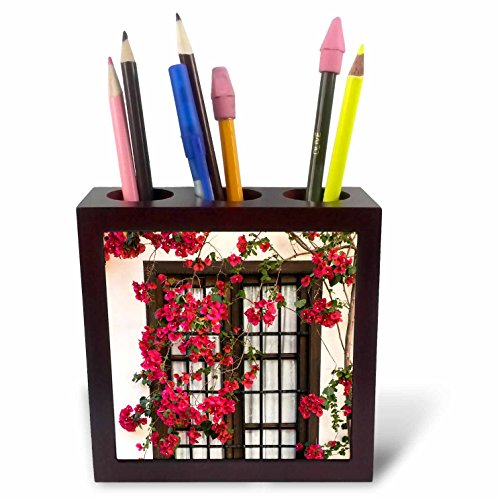 3dRose Danita Delimont - Flowers - Spain, Andalusia. Cordoba. Red bougainvillea and house window. - 5 inch tile pen holder (ph_277893_1) by 3dRose