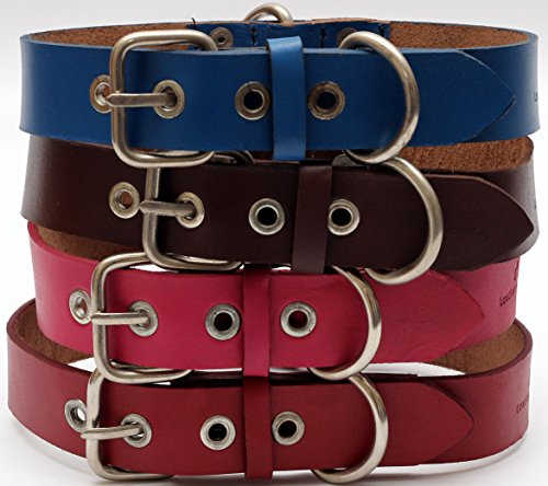 Genuine Leather Dog Collar with Stainless Steel Buckle and Double D Rings (Medium, 15-18 Inch, Blue) – Unbreakable!