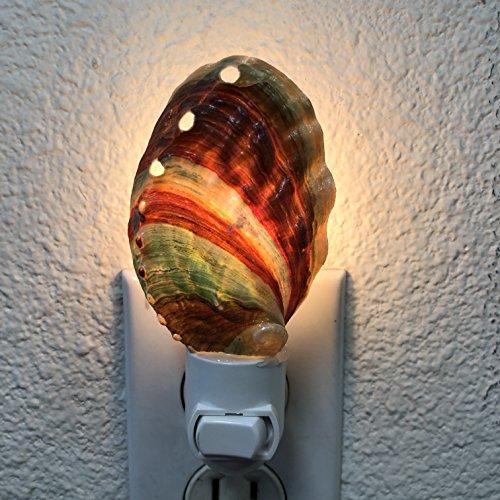 PEPPERLONELY Cut Rainbow Abalone Sea Shell Night Light Nautical Natural Seashell Beach Home Décor (Lamp Shell Abalone)