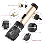 Sminiker Professional Low Noise Rechargeable Cordless Cat and Dog Clippers – Professional Pet Clippers Grooming Kit,animal clippers Pet Grooming Kit(Gold)