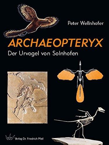 Archaeopteryx: Der Urvogel von Solnhofen