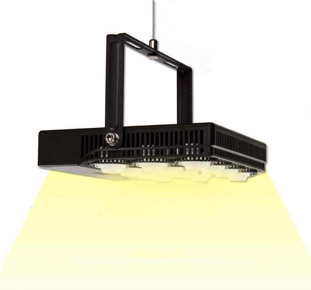 SANSI 70W Daylight LED Grow Lights for Indoor Plants
