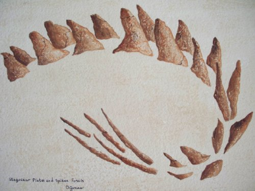 (Stegosaur Plates and Spikes Fossils)