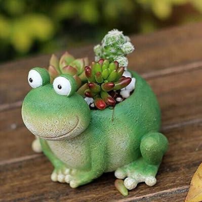 Maceta de rana creativa de resina para macetas de jardín, plantas suculentas, plantas verdes, decoración en miniatura: Amazon.es: Jardín