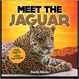 Meet The Jaguar: Fun Facts U0026 Cool Pictures (Meet The Cats): David Atkins:  9781495356476: Amazon.com: Books
