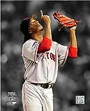 "Pedro Martinez Boston Red Sox Spotlight Action Photo (Size: 8"" x 10"")"