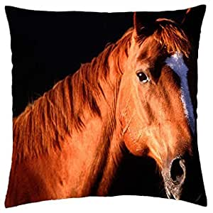 a chestnut mare - Throw Pillow Cover Case (18