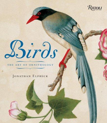 Birds: Mini Edition: The Art of Ornithology