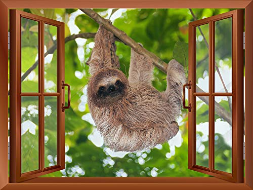 A Sloth Hanging on a Tree Branch Outside of an Open Window Removable Wall Sticker Wall Mural