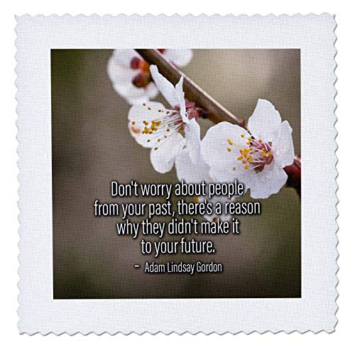 3dRose Alexis Design - Quotes About Life - Sakura Cherry Flowers. Adam Lindsay Gordon Quote Do not Worry About - 25x25 inch Quilt Square (qs_302691_10)