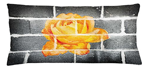 Ambesonne Rustic Flower Throw Pillow Cushion Cover, Trippy Modern Graffiti with Rose Petals on the Brick Wall Urban City Life, Decorative Square Accent Pillow Case, 36 X 16 Inches, Grey Orange (City Fabrics Brick Furniture)