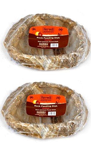Flukers Rock Dish, Medium (2 Pack) by Fluker's