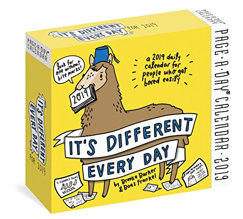 It's Different Every Day 2019 Calendar
