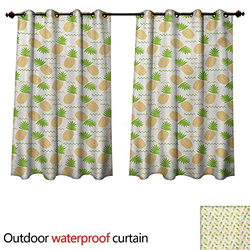 WilliamsDecor Tropical Outdoor Balcony Privacy Curtain Herringbone Stripes with Dots Background Summer Fruits Arrangement W84 x L72(214cm x 183cm)