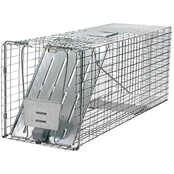 Havahart 1079 Live Animal Professional-Style One-Door Raccoon, Groundhog, Opossum, and Stray Cat Cage Trap