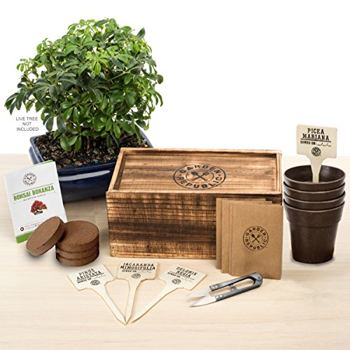 Bonsai Tree Seed Starter Kit - Mini Bonsai Plant Growing Kit, 4 Types of Seeds, Potting Soil, Recycled Bamboo Pots, Pruning Shears Scissor Tool, Plant Markers, Wood Gift Box, eBook - Garden Republic