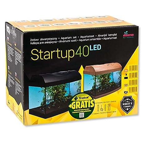 Diversa Acuario Startup Set LED, Rectángulo Negro, acuarios Juego completo con platillos de cristal y accesorios para tus peces y Expert iluminación LED: ...