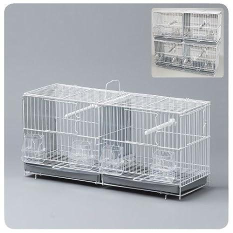 Alamber Jaula Cría 52x17x25cm: Amazon.es: Productos para mascotas