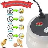 iTavah Egg Incubator, Digital Incubators for