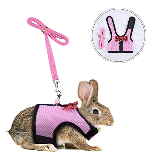PERSUPER Rabbit Kitten Harness Cat Leash - Bunny Soft Nylon,Running,Walking Jogging Harness Leash with Safe Bell for Ferret and Other Small Pet Animals