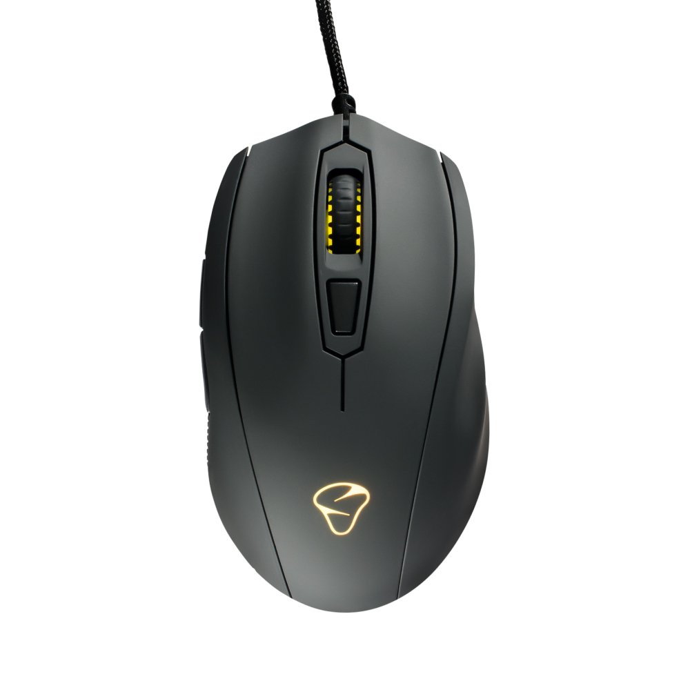 gamers Mionix mouse