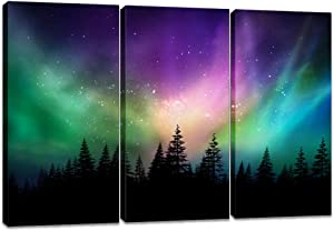 Innopics 3 Piece Forest Under Colorful Northern Light Picture Canvas Print Nature Aurora Home Wall Decor Starry Landscape Poster Painting Modern Framed Art for Living Room Bedroom Office Decoration