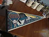 1998 Arizona Diamondbacks Inaugural pennant b1