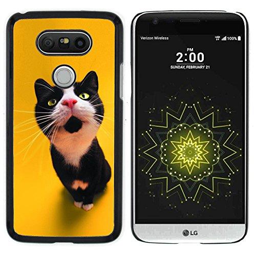 STPlus Gato en una caja Animal Carcasa Funda Rigida Para LG G5 #30