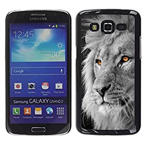 Design for Girls Plastic Cover Case FOR Samsung Galaxy Grand 2 Lion White Black King Africa Orange OBBA