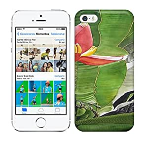 Best Power(Tm) HD Colorful Painted Watercolor Banana Blossom Painting Hard Phone Case For Iphone 5/5S