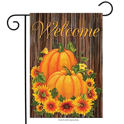 (Briarwood Lane Pumpkins and Mums Fall Welcome Garden Flag Autumn Floral 12.5