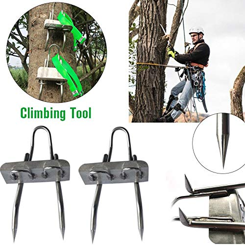Enhanced Edition 304 Stainless Steel Tree Climbing Tool - Multifunction Pole Climbing Spikes Hook Non-Slip Climbing Tree Shoes for Hunting Observation Picking Fruit (4 Scratch)