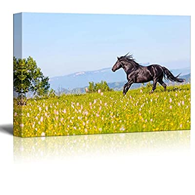 Canvas Prints Wall Art - Arab Racer Runs on a Green Summer Meadow | Modern Home Deoration/Wall Art Giclee Printing Wrapped Canvas Art Ready to Hang - 12