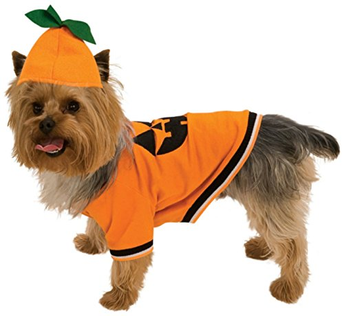 Rubie's Pumpkin Pet Costume, Medium]()