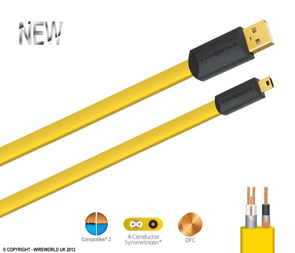Amazon.com: WIREWORLD Chroma USB 2.0 Audio Cable A to B 2.0M ...